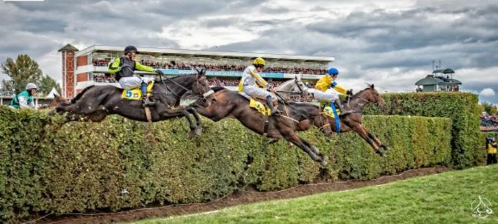 horses jumping over thumb.jpg