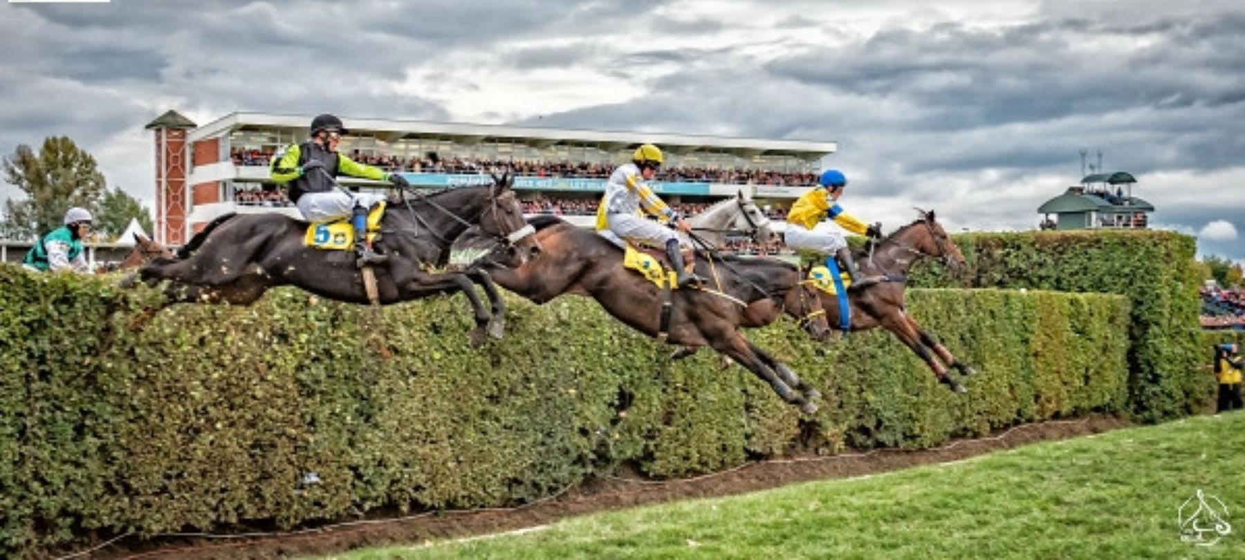 horses jumping over hero.jpg
