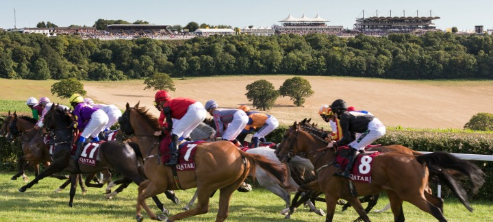 goodwood-horses-stand-thumb.jpg