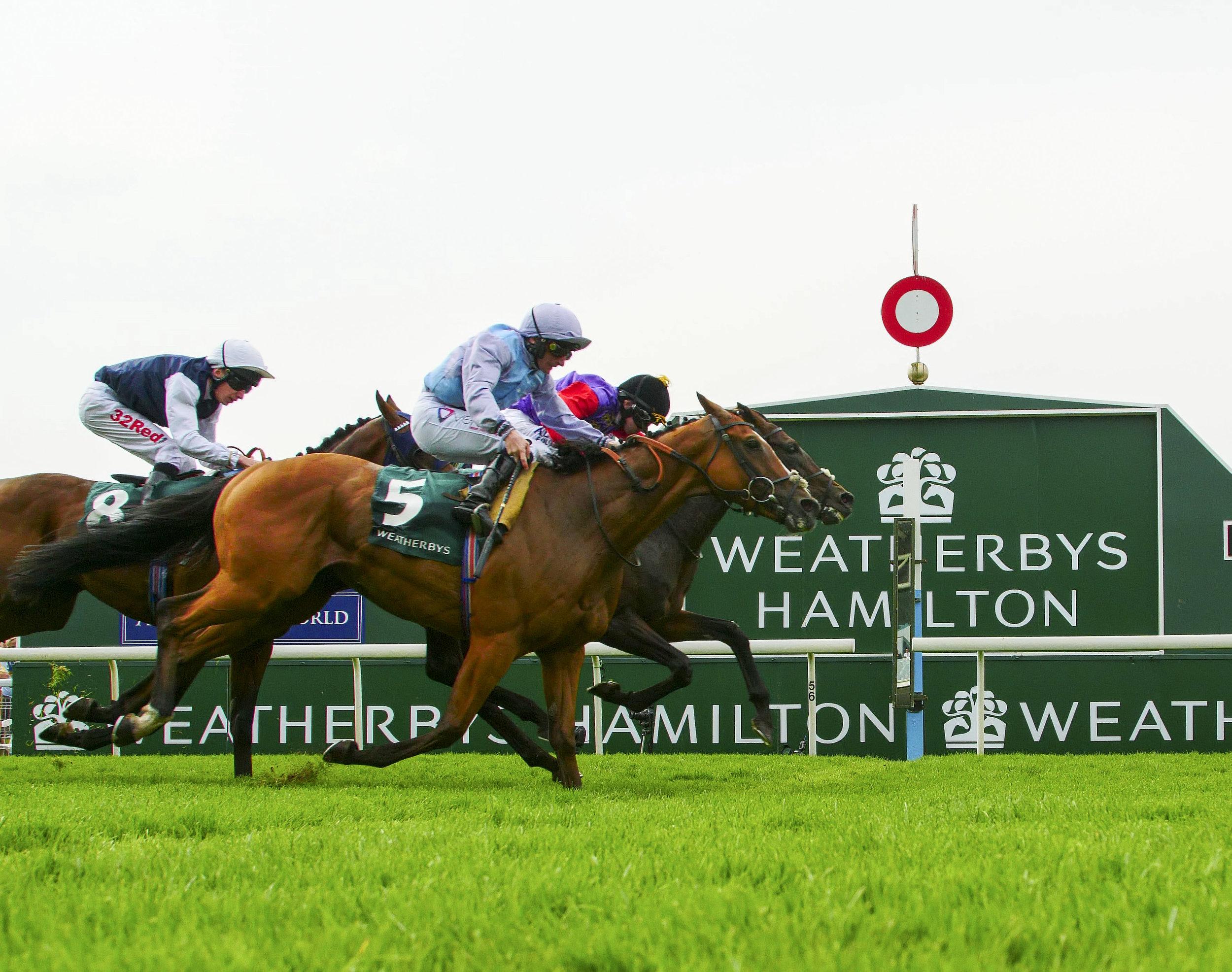 Weatherbys Hamilton Stayers Million
