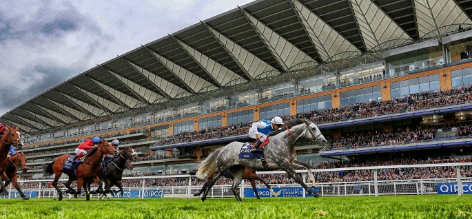 Copy of ascot-champs-grey-mobile.jpg