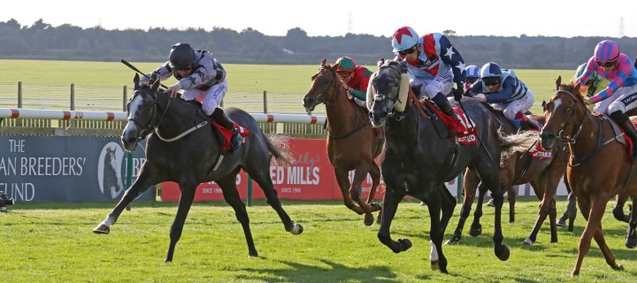 Copy of racecourses%2Fnewmarket-racecourse%2Ffeatures%2FCambridgeshire%2Fnewmarket-cambs-race-mobile.jpg