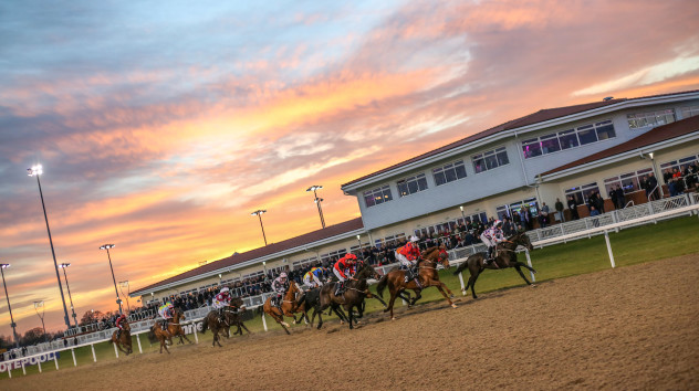 Chelmsford Races