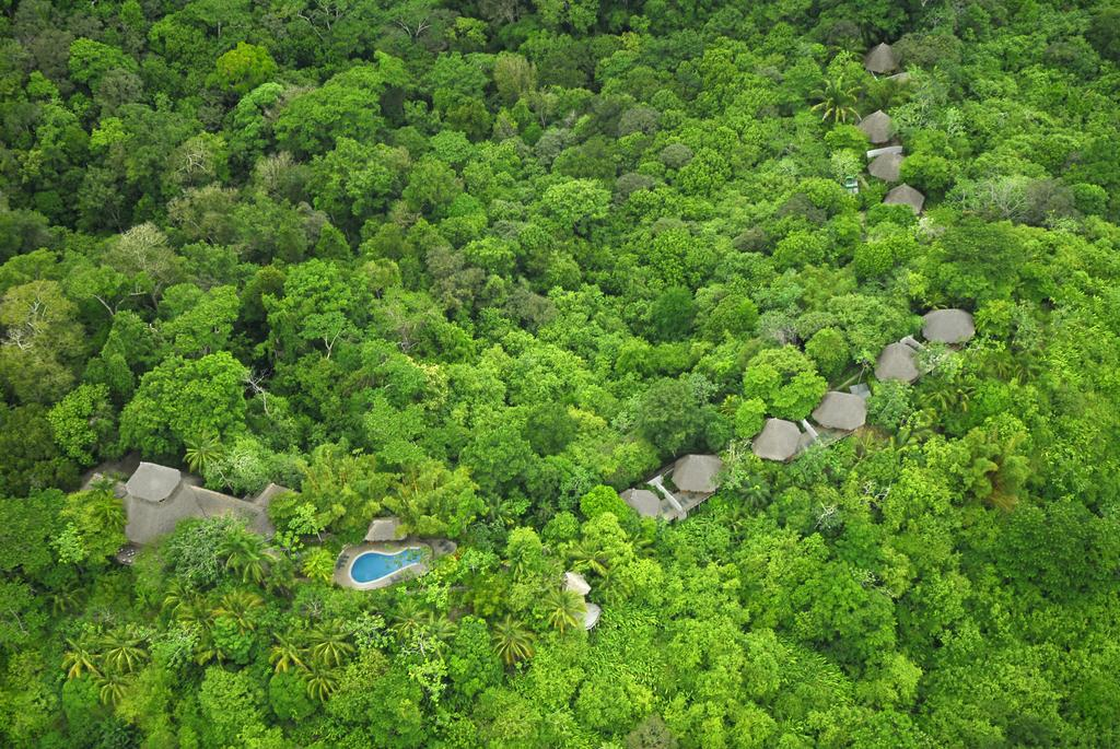 Lapa Rios Lodge, Costa Rica, Cayuga Collection
