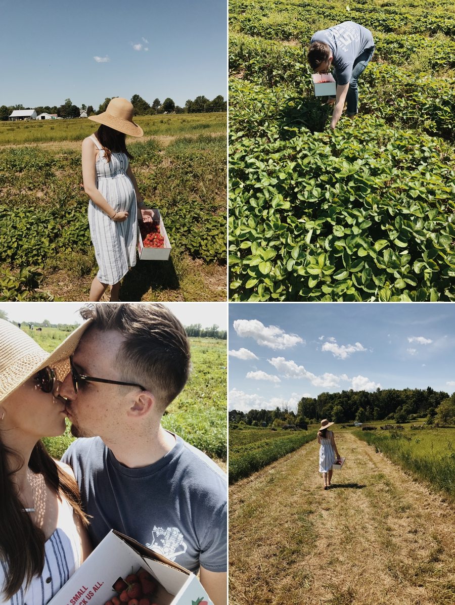 18 weeks strawberry picking with my honey babe. He's allergic but god love him for making my day anyways!