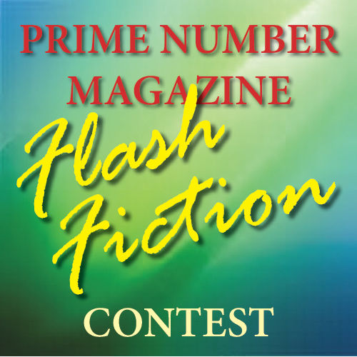 PNM Flash Contest banner.jpg