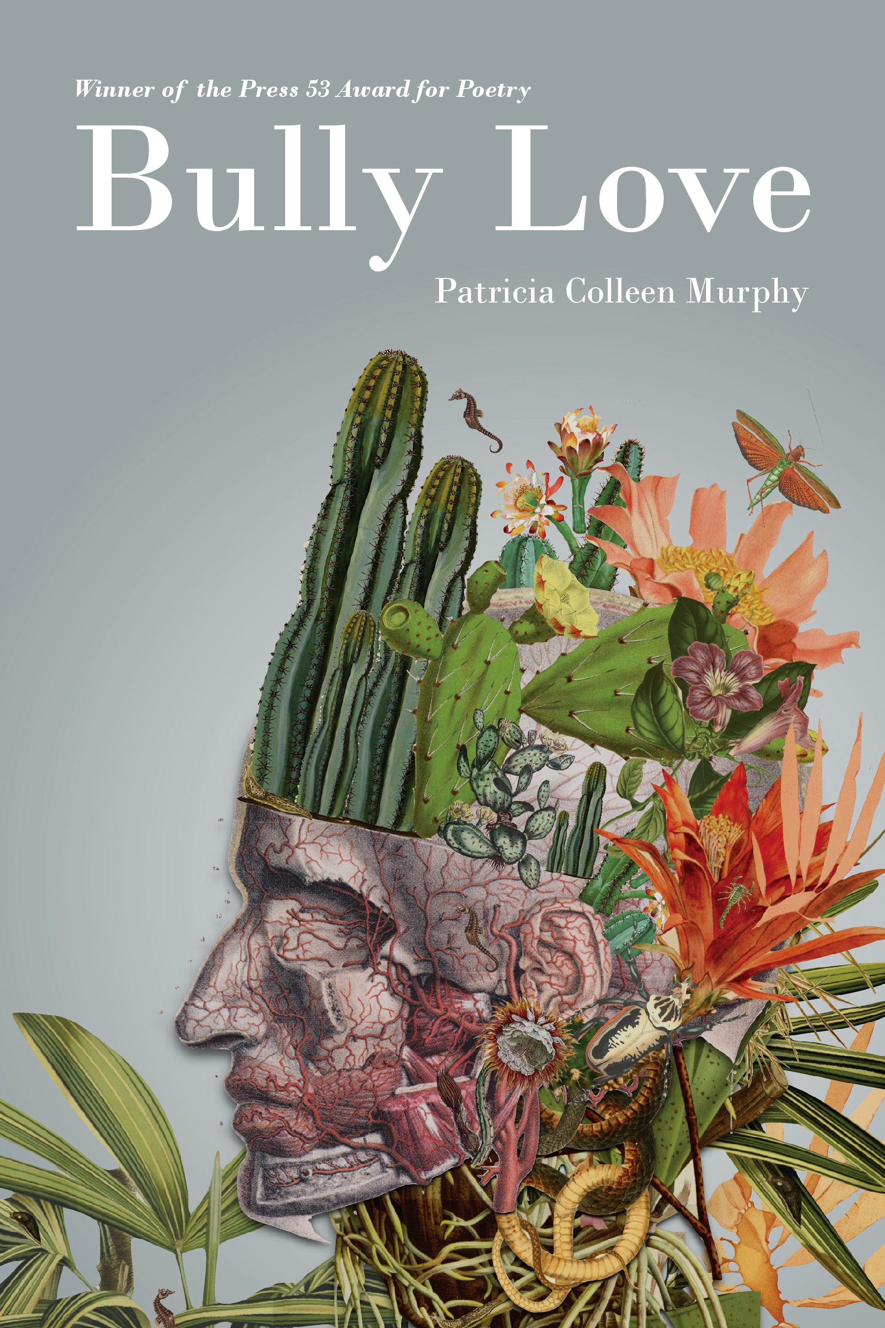 Bully Love by Patricia Colleen Murphy.jpg