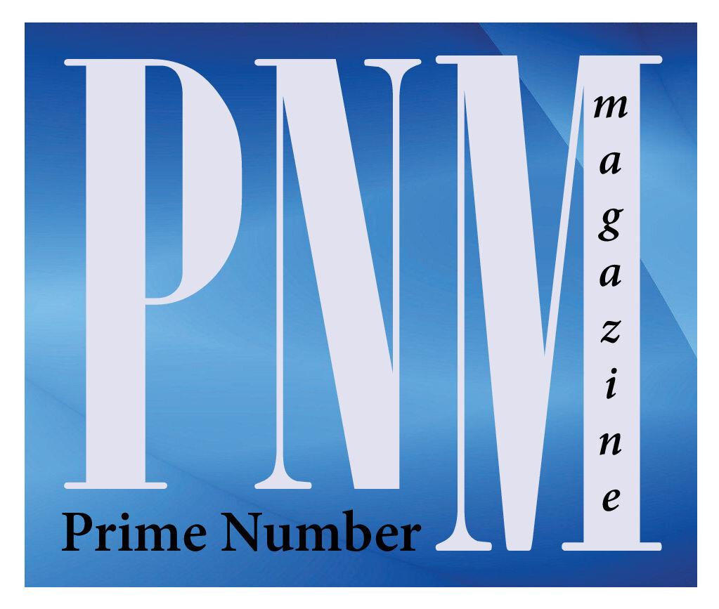 PNM logo Silver.jpg