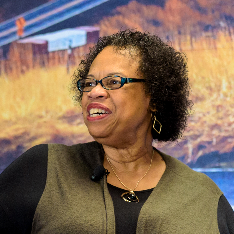 Vicki Clark - Building the Capacity of Organizations Memphis, TN