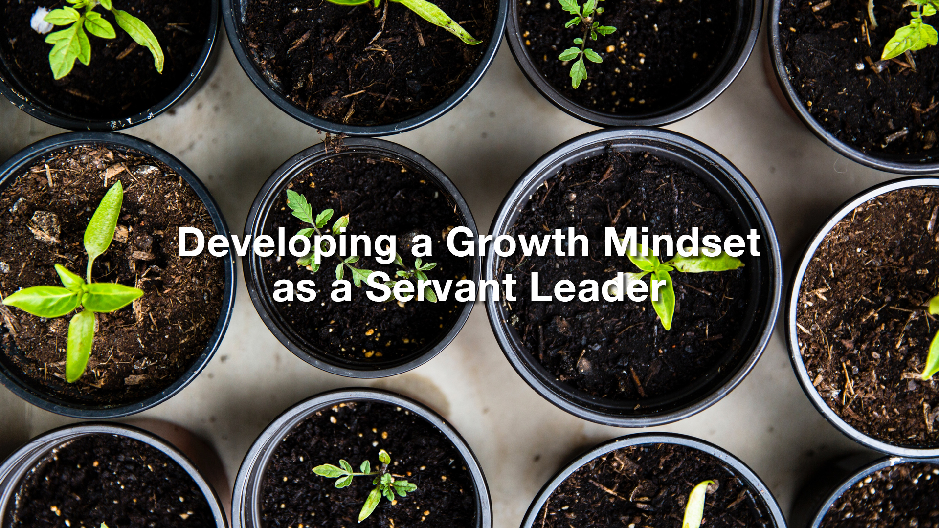 Developing a Growth Mindset 1920x1080.jpg