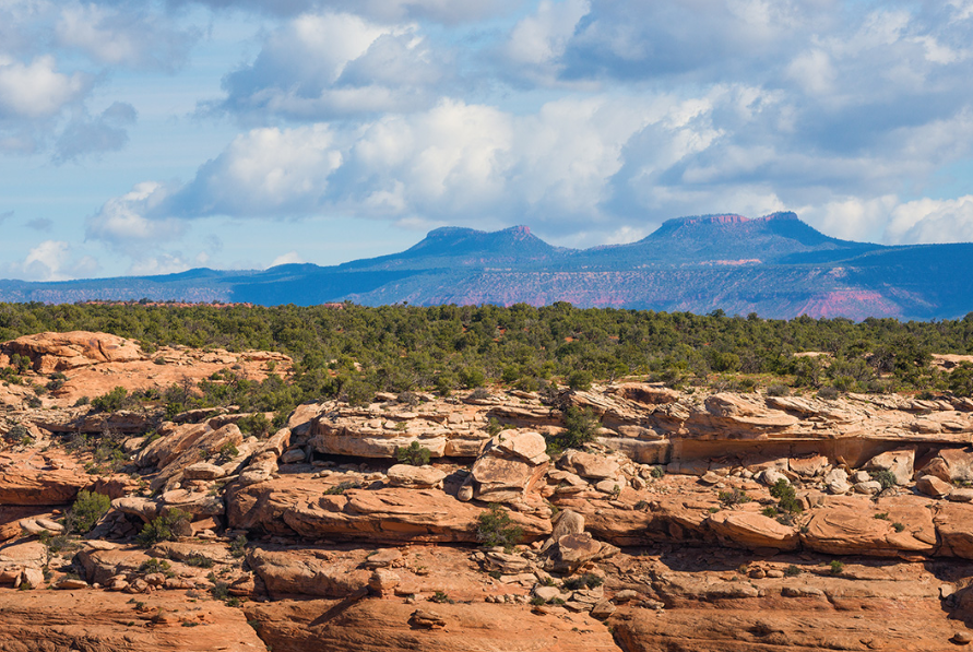 Bears Ears Buttes, Bears Ears National Monument - Courtesy of Earthjustice.org