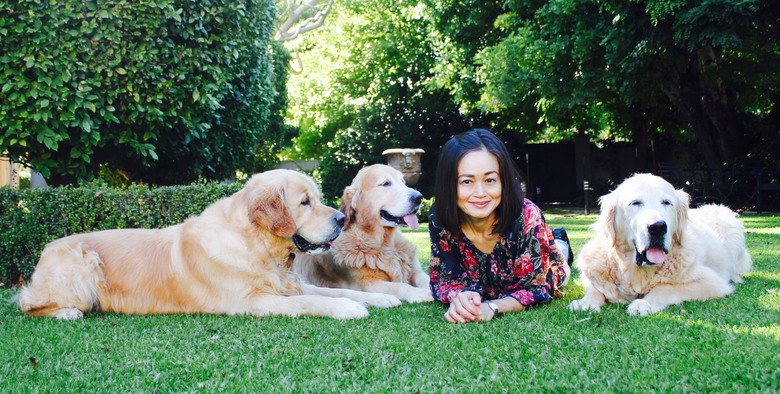 canine_muscleworks_cmw_perth_wa_jackie_crawford_about_dogs