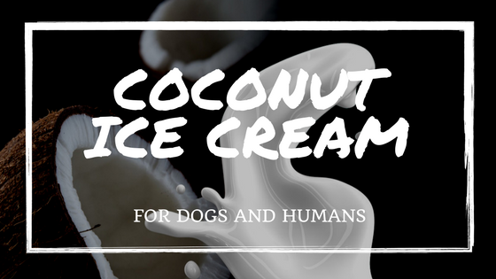 CANINE_MUSCLEWORKS_recipes_coconut_dogs