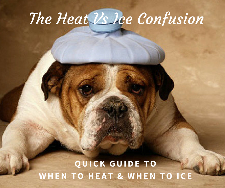 canine_muscleworks_heat_ice