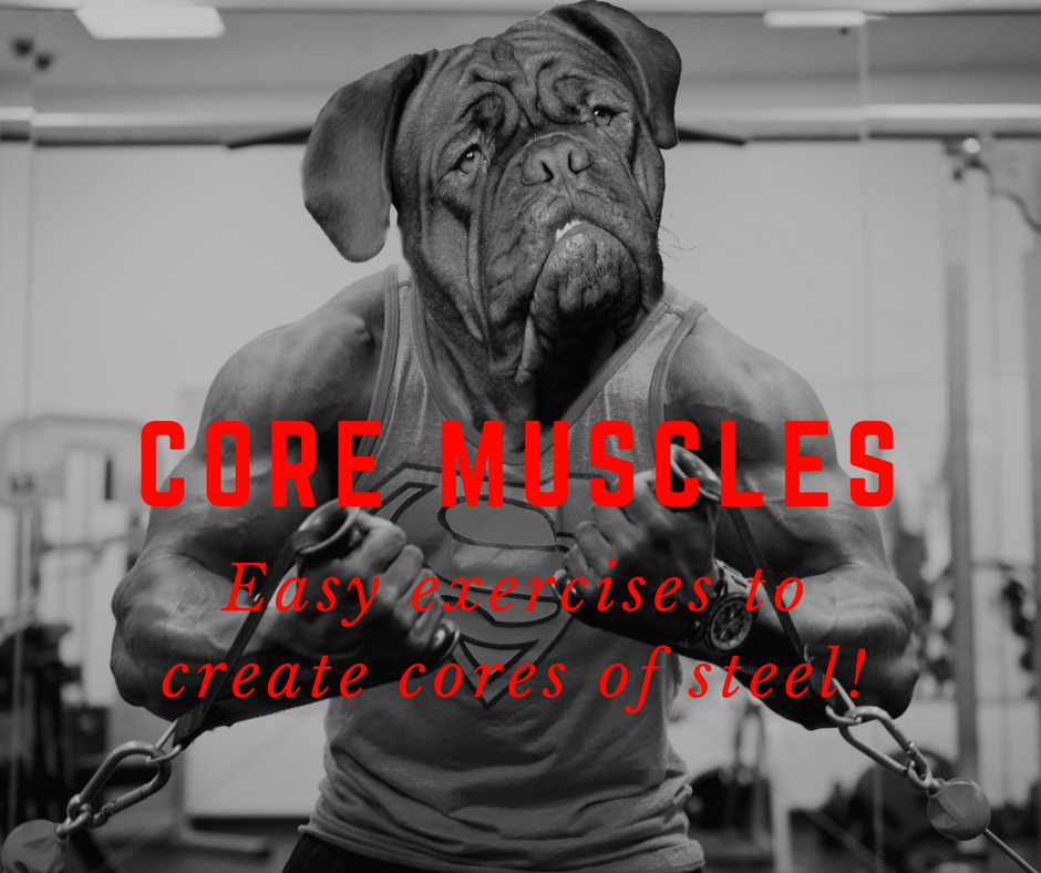 canine_muscleworks_CORE_MUSCLES.png