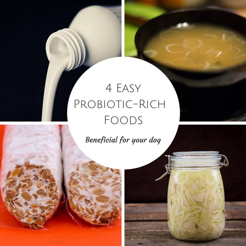 4Probiotic-Rich Foods.png