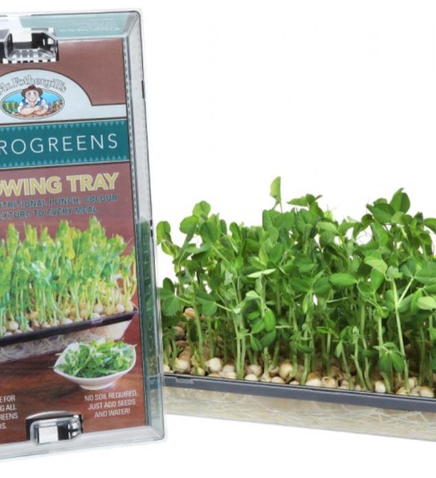 Mr Fothergill's Microgreen Trays