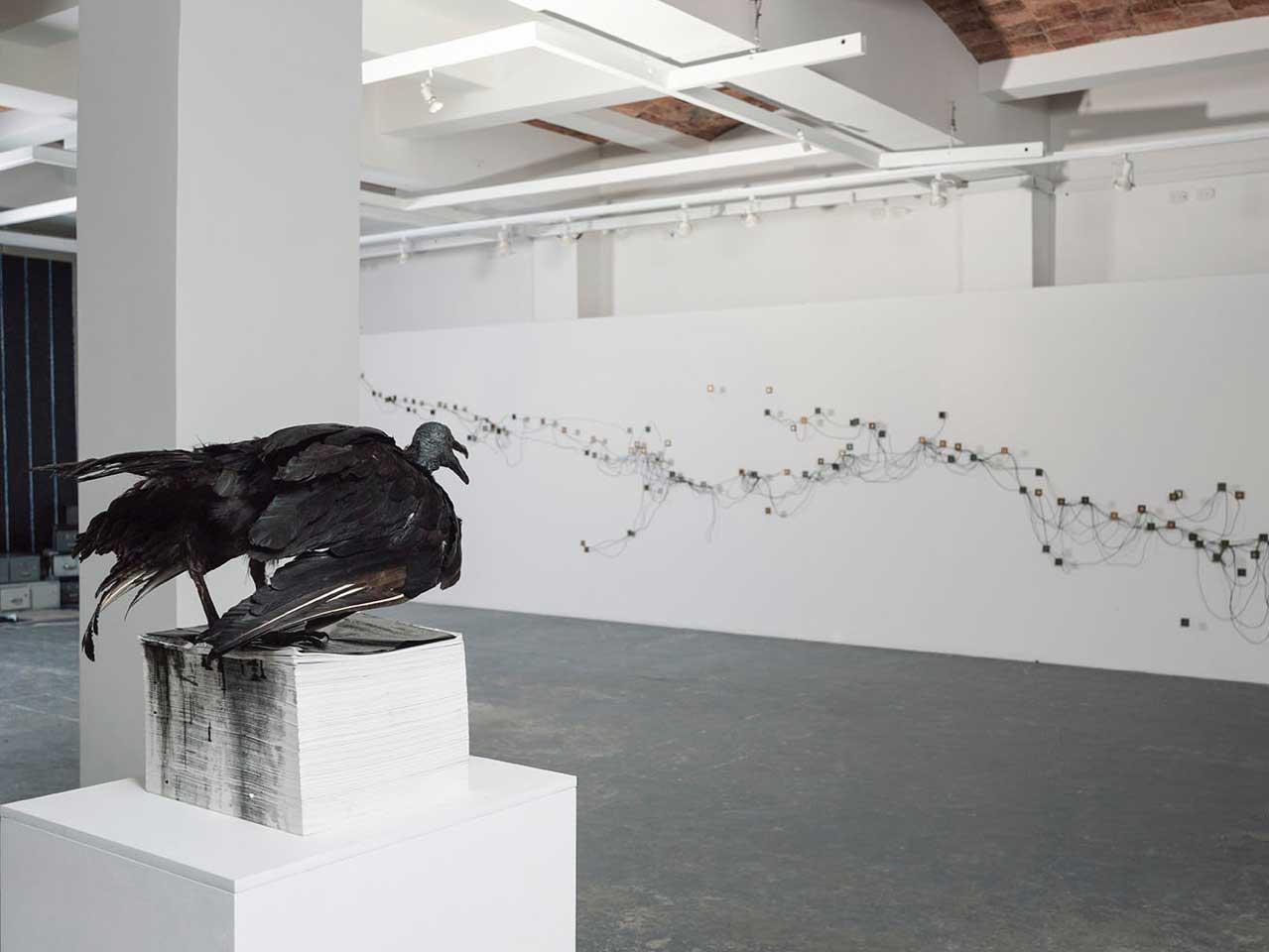 Nudo Ciego - Eduard Moreno