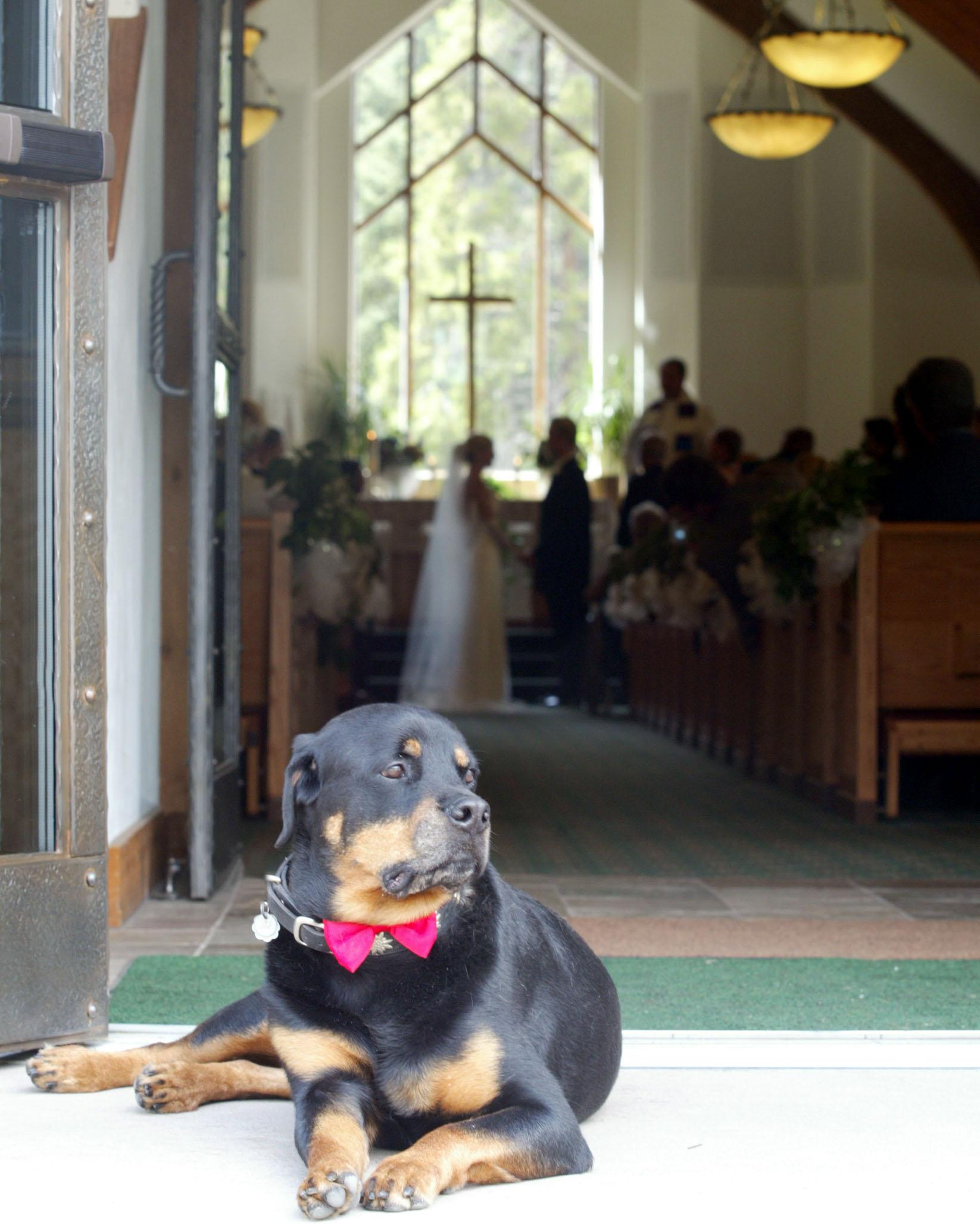 The-vail-interfaith-chapel-wedding-rates-axelphoto.JPG