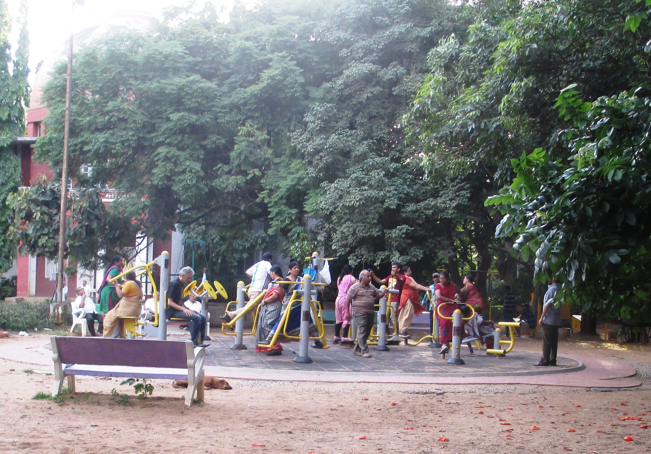 Open air gymnasium in a public park in Bengaluru (Photo by authors)