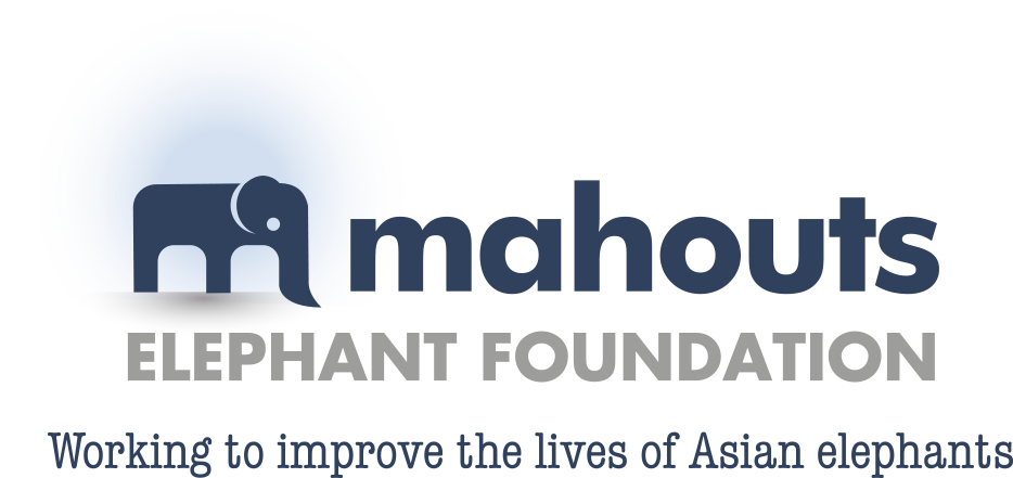 MAHOUTS FOUNDATION LOGO STRAP - Rebecca Winkler.png