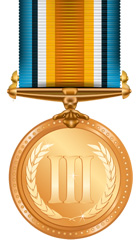 Image of a bronze medal