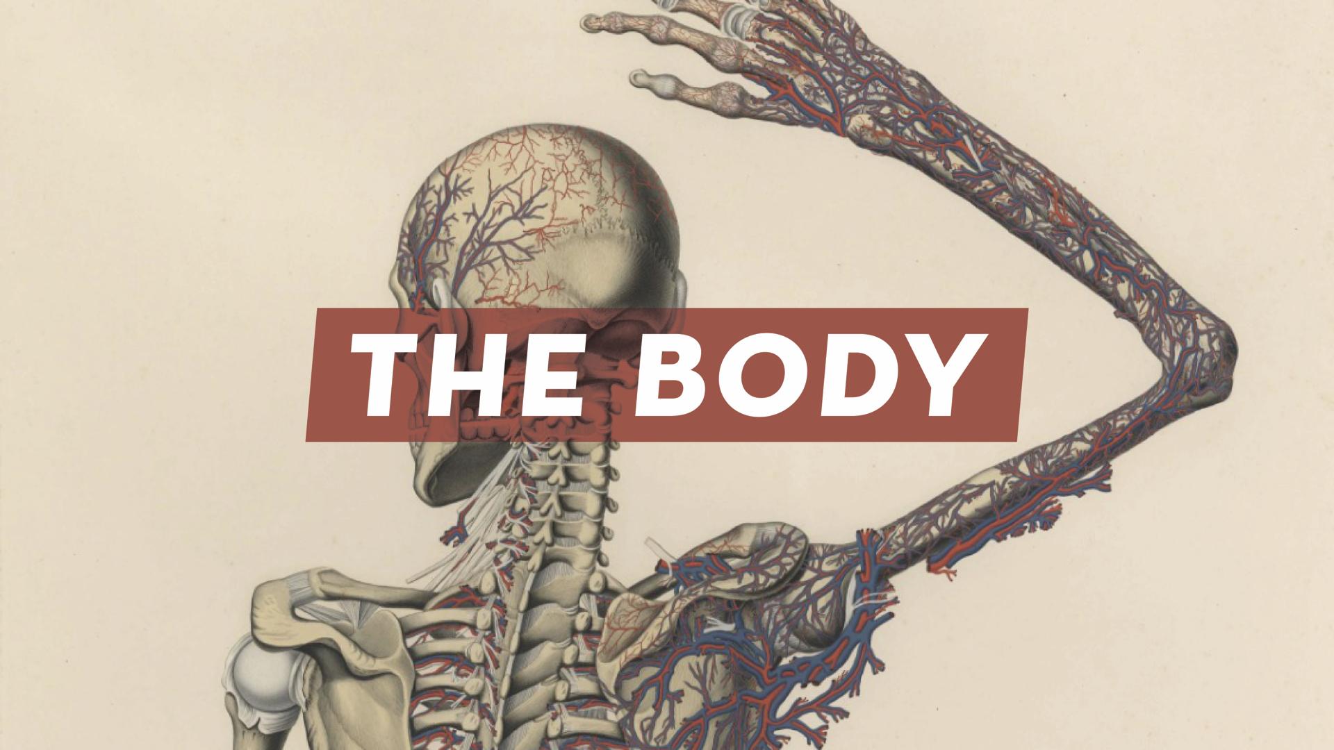 The Body Nov 20.001.jpeg