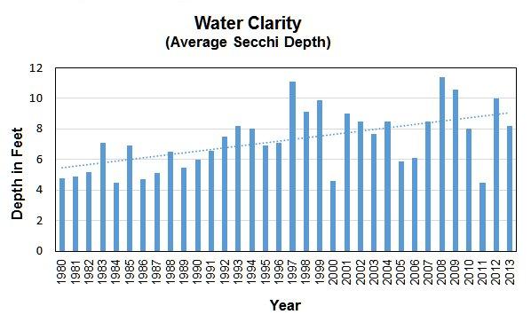 Water Clartity.jpg