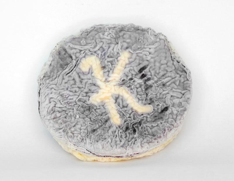Kato, exclusief voor Kaasaffineurs Van Tricht