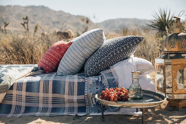🌵🍇 Look out for our new WILDERNESS COLLECTION LAUNCHING FW 2018🍇🌵 #holliewoodstyle #madeinla #pillowshop #allnatural #organiccotton 📸 @caseykaui 🍇🌵🍇🌵🍇🌵