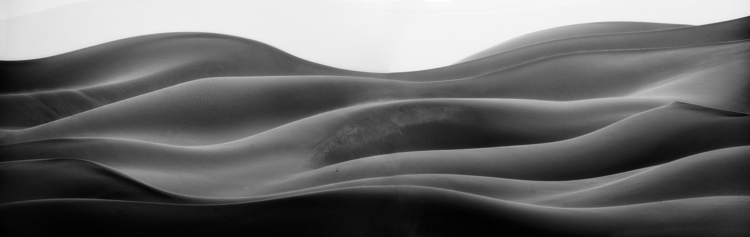 Curves   A black and white study of the dune shapes in a sandstorm in the Sahara.