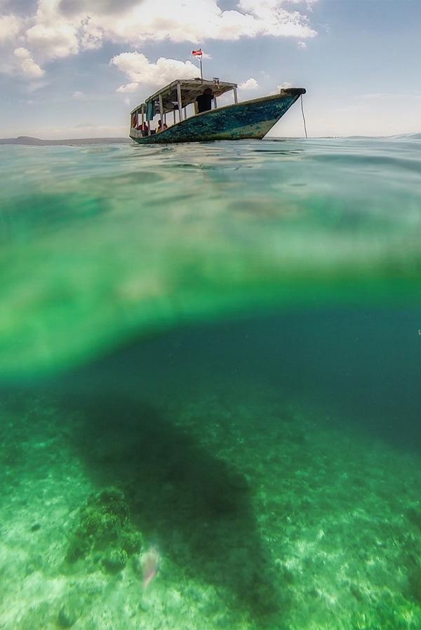 Underwater16-2.jpg