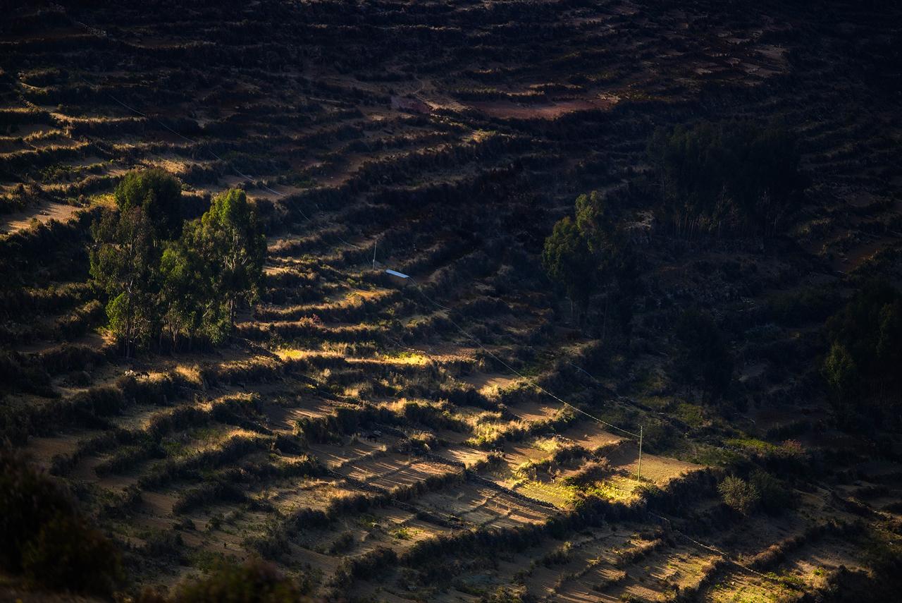 Terraces-on-Isla-del-Sol.jpg