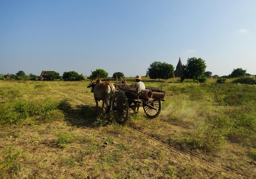 Bagan300.jpg