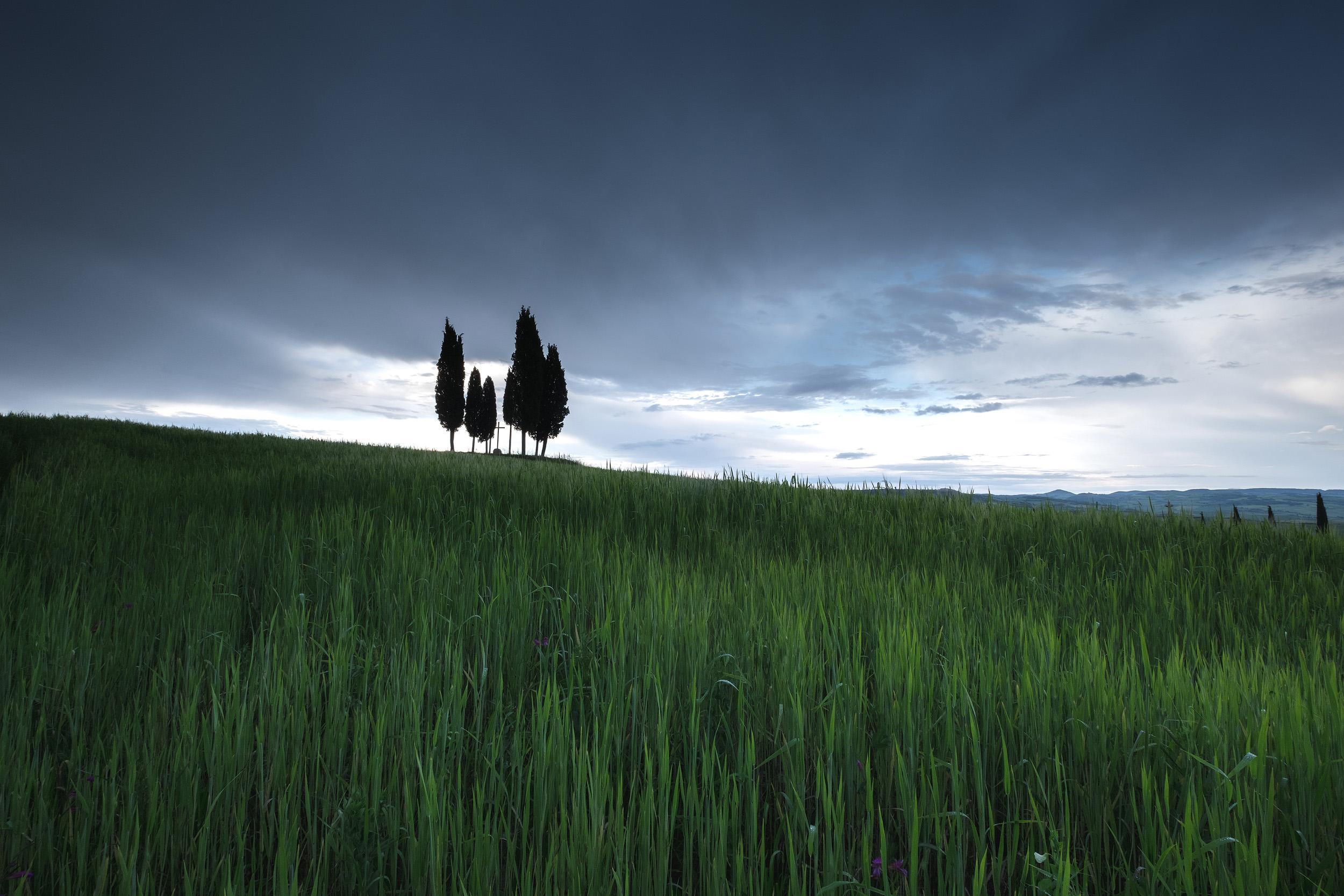Tuscany-14 copy.jpg