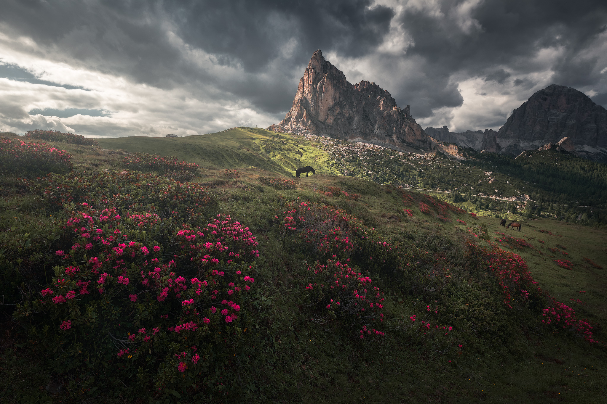 dolomites_workshop_15.jpg