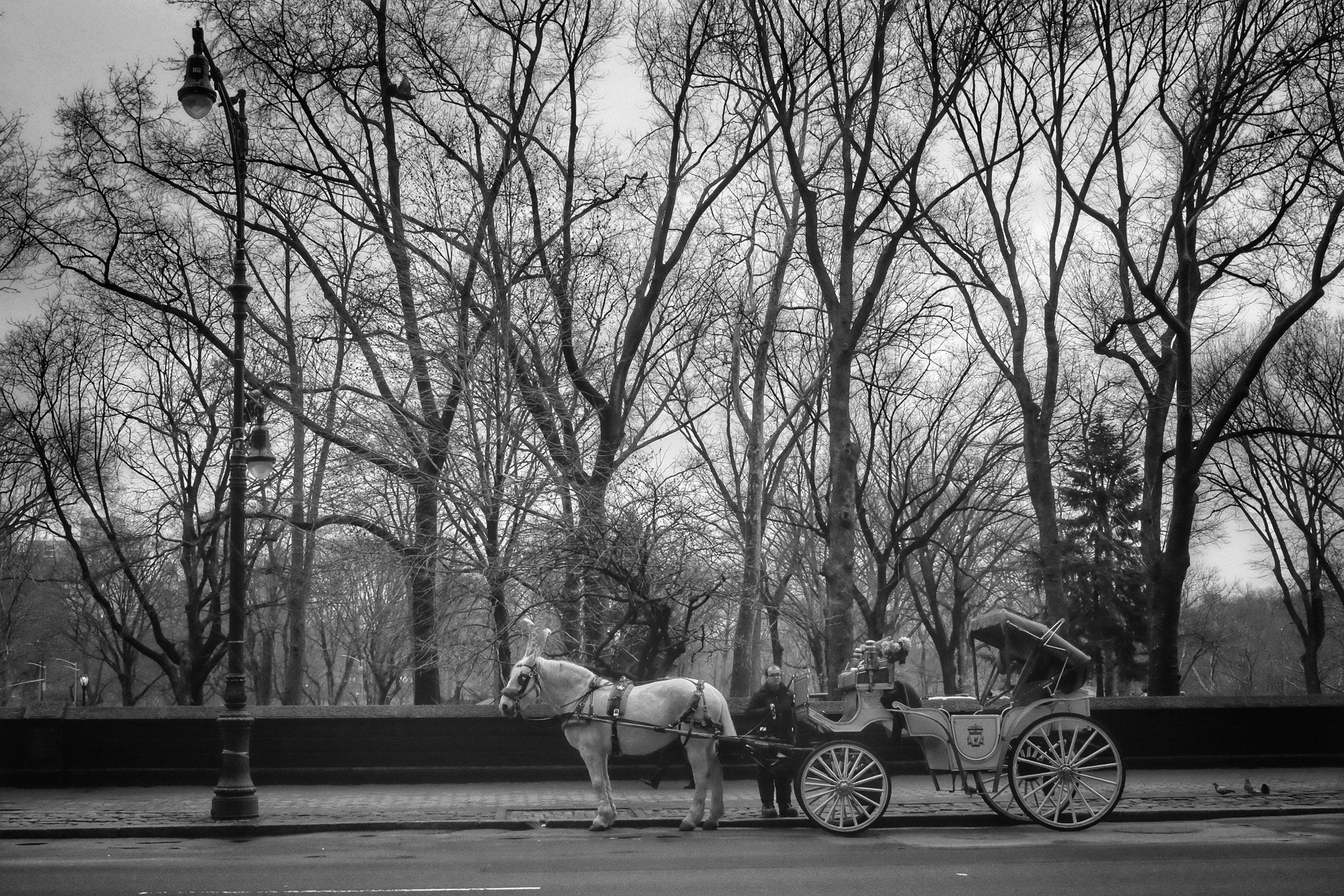 Central Park West. Columbus Circle. New York City. 2017.
