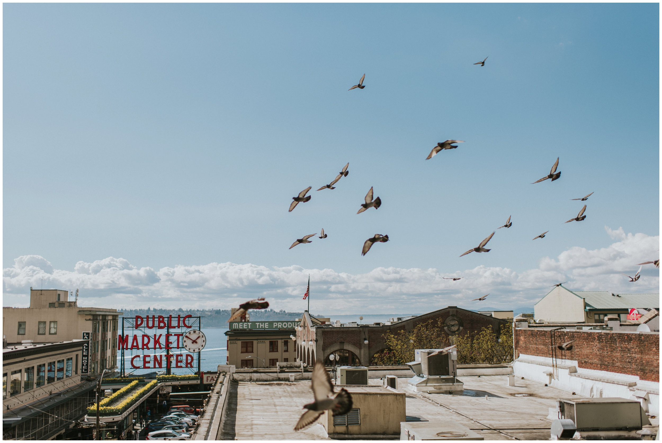Pike place market roof top portrait with birds flying in the sky | Seattle Engagement Photographer www.riversandroadsphotography.com
