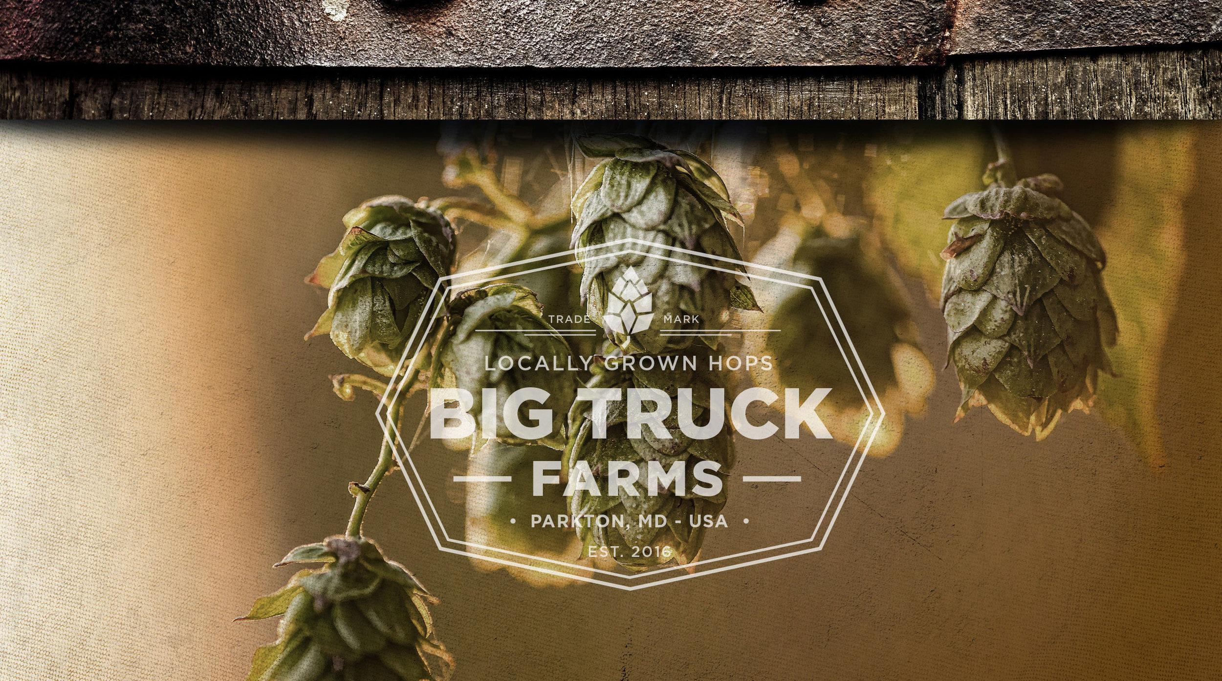 BigTruckFarmsWebsiteHomePage.jpg