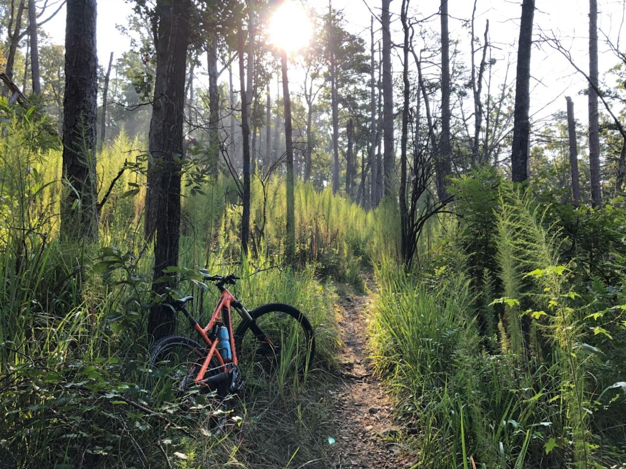 THE SEARCH FOR BIGFOOT ADVENTURE RACE -