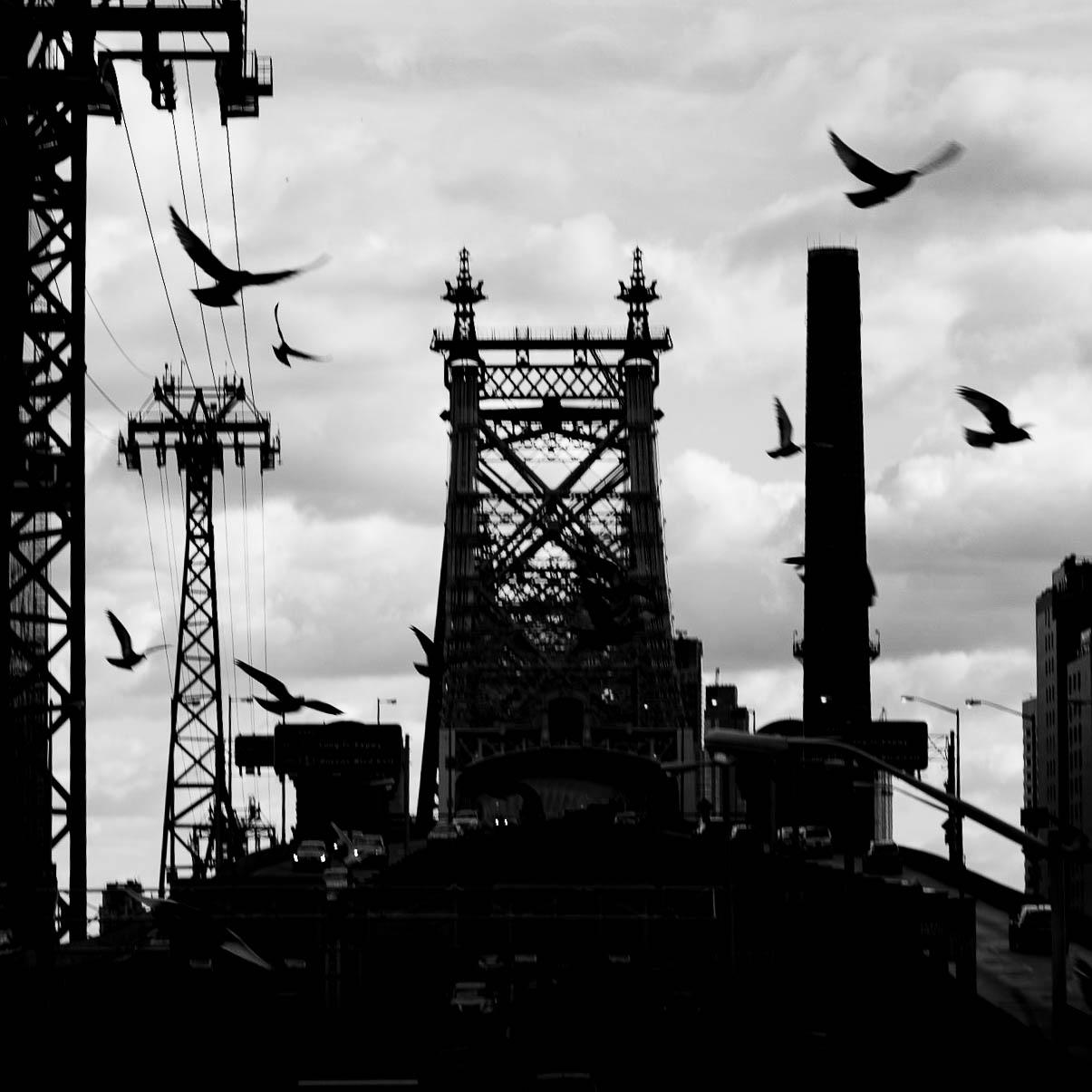 NYC_20161230_05379_©2016ArgunTekant.jpg