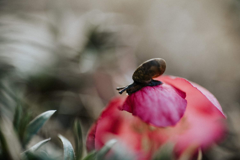 springbreak-55.jpg