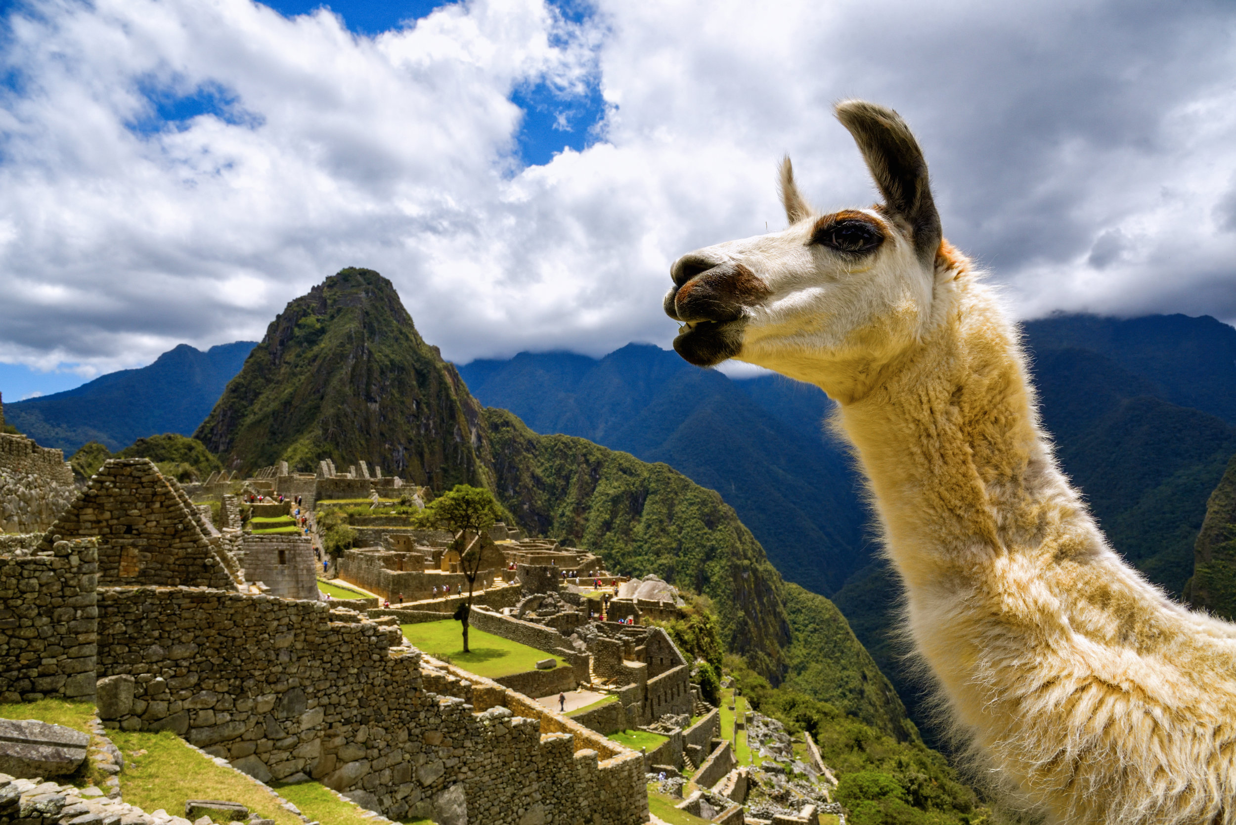 Image; Machu Picchu, Peru