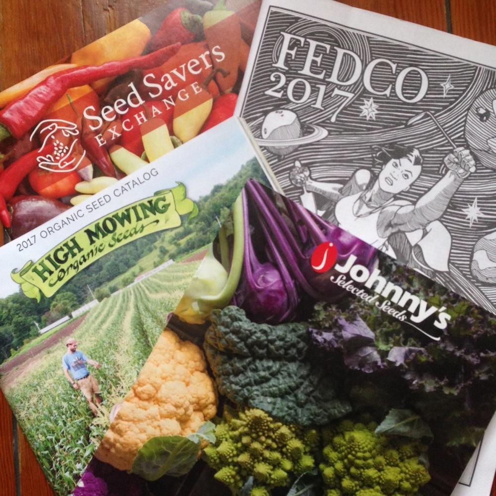 seed catalogs.JPG