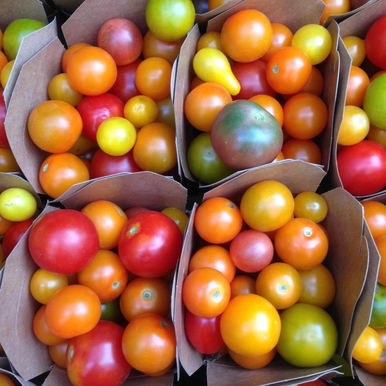 cherries in pints.JPG