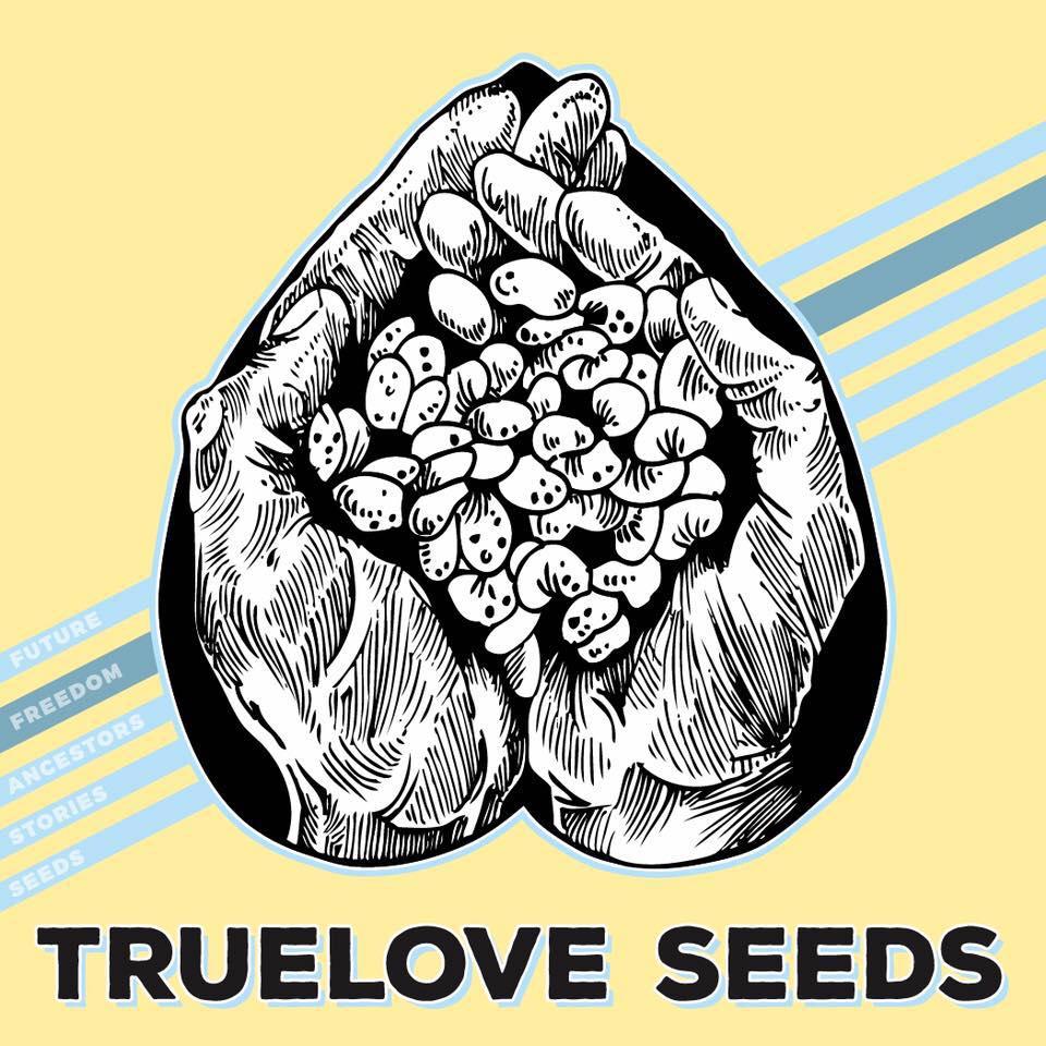 true love logo.jpg
