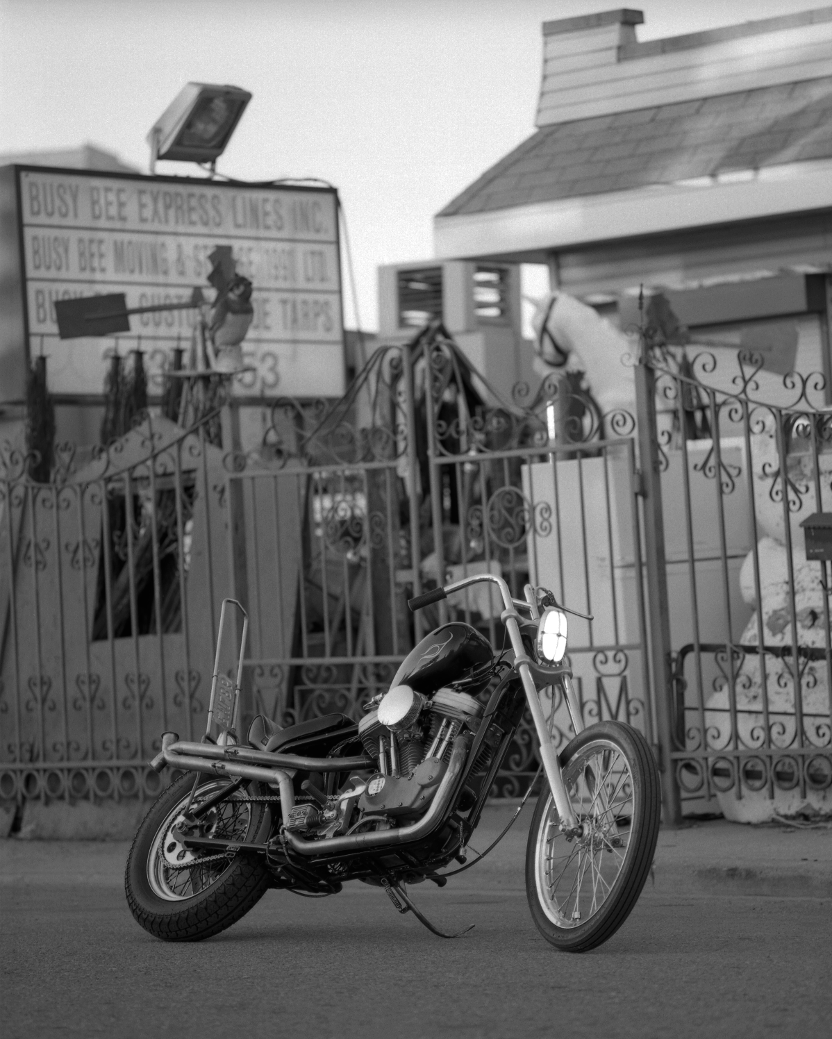 Sportster - Phil Said. RZ67 with 110mm 2.8 on Delta 100.