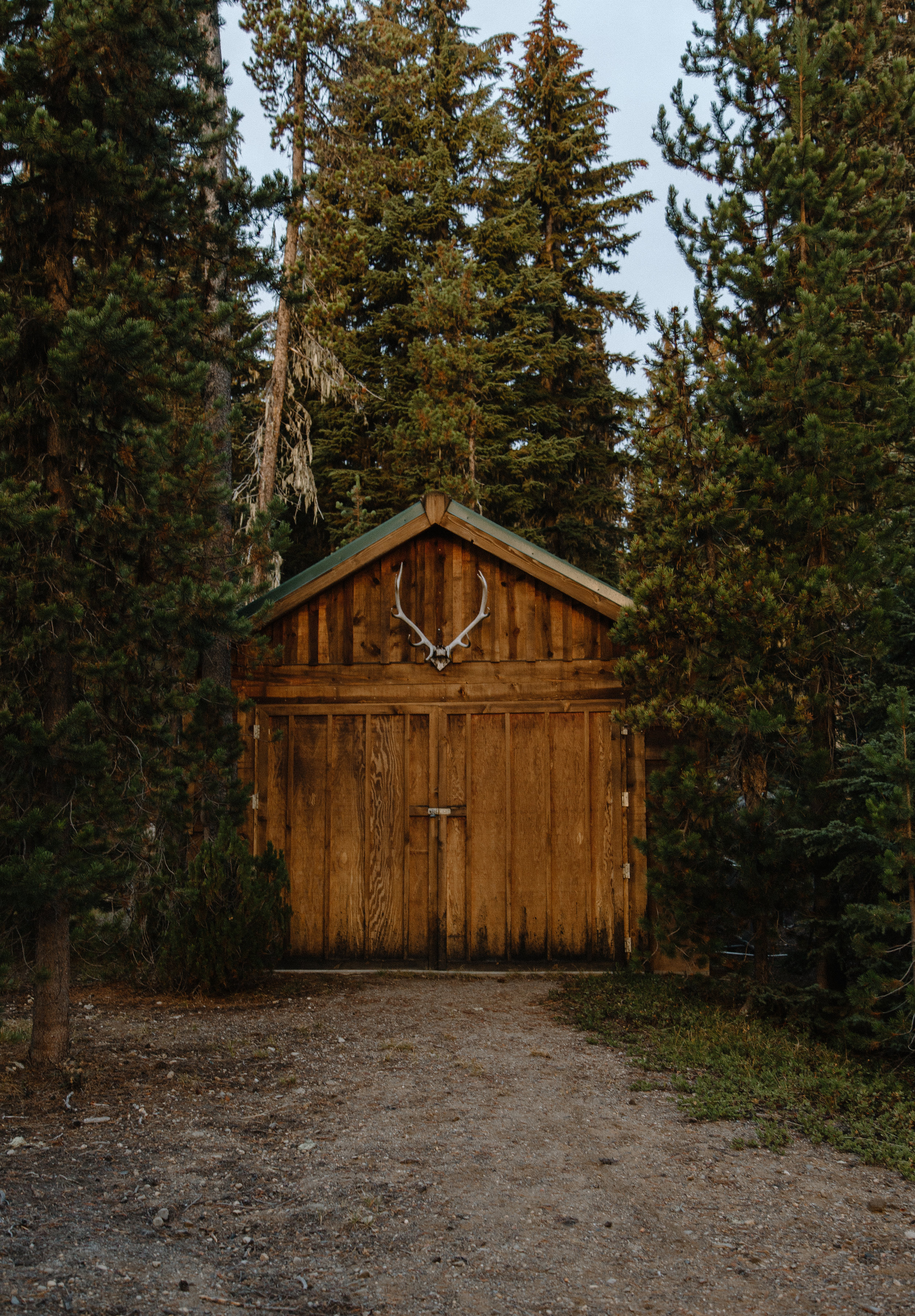 Elk Lake Resort is filled with a variety of public and private cabins spread around the vicinity of the lake. This rustic shack was tucked in the forest behind one of the cabins people can rent for the summer.