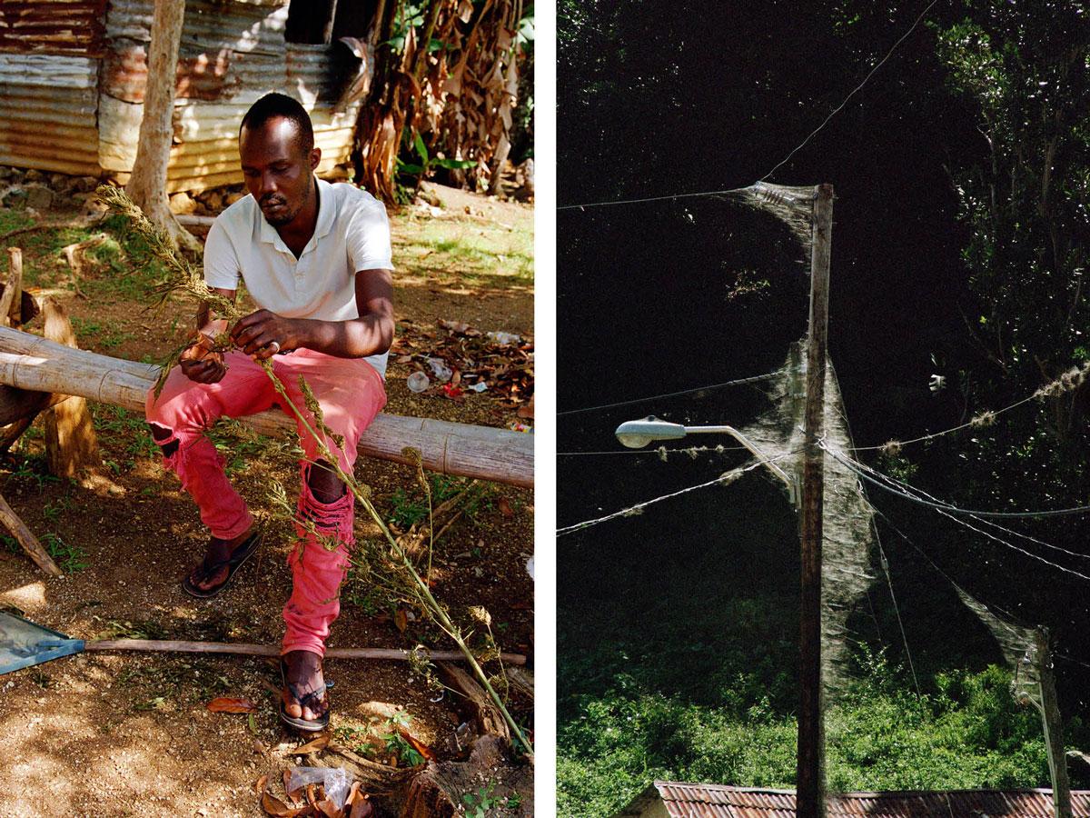 marley-natural-jim-mangan-jamaica-ganja-farmers-9.jpg