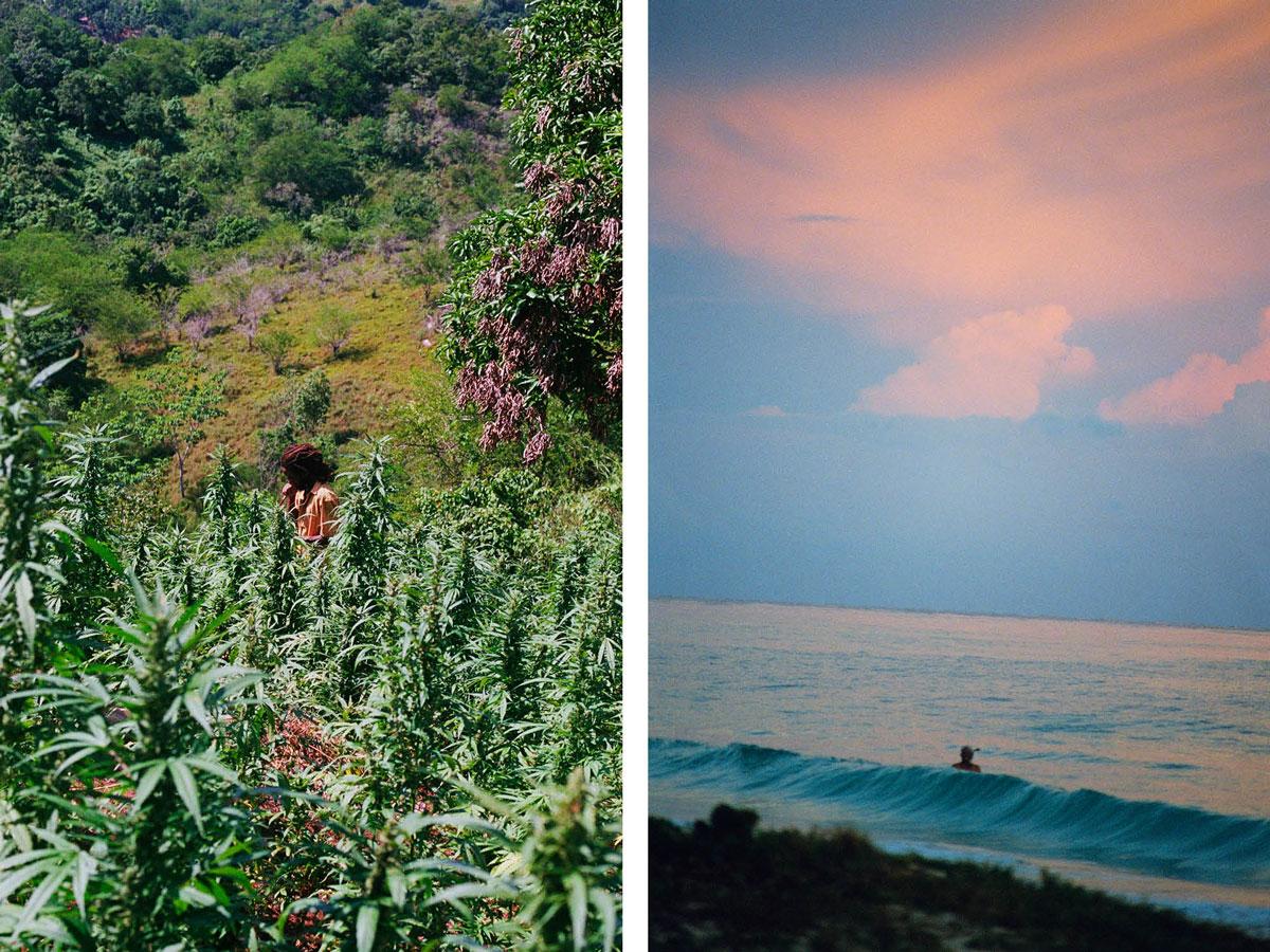 marley-natural-jim-mangan-jamaica-ganja-farmers-11.jpg